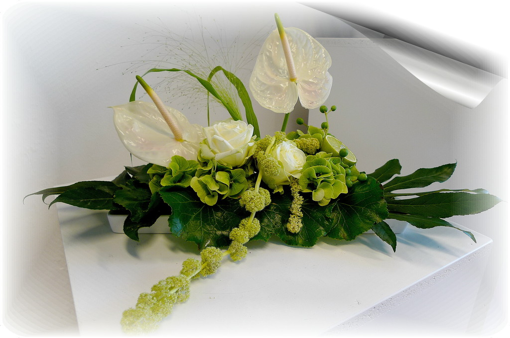 Blumen Hattermann Moderne Floristik Dekorationen